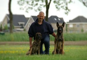 Honden demonstraties in Nederland | Hondenschool zuid west